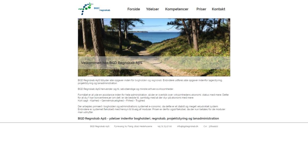 BGD Regnskab Ravn Hjemmesider