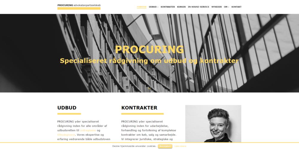Procuring Ravn Hjemmesider